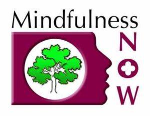 Mindfulness Paisley